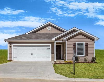 Columbia  Single Family Home For Sale: 2613 Stinger Dr