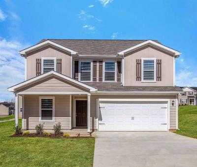 Columbia  Single Family Home For Sale: 2534 Queen Bee Drive
