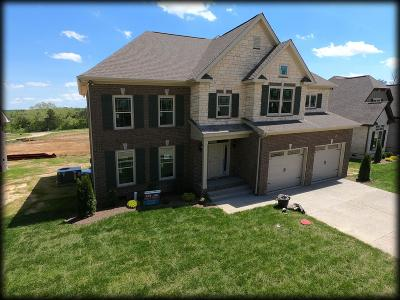 Spring Hill Single Family Home For Sale: 2018 Lequire Ln Lot 262