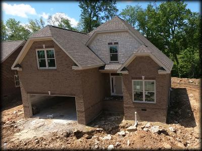 Spring Hill Single Family Home For Sale: 2017 Lequire Lnlot 215
