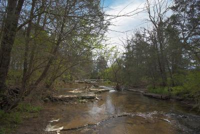 Wilson County Residential Lots & Land For Sale: 1 Richmond Rd