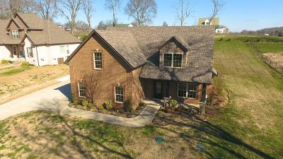 Eagleville Single Family Home For Sale: 1104 Proud Eagle Dr
