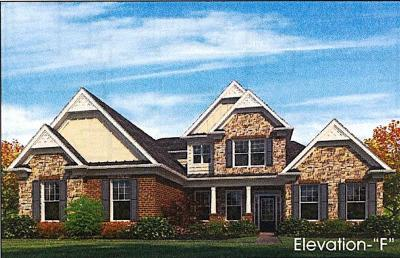 Nolensville Single Family Home For Sale: 800 Alameda Ave Lot #32