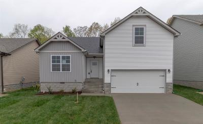 Clarksville Single Family Home For Sale: 1381 Abby Lou Drive