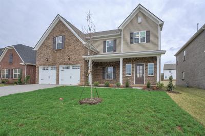 Stonebridge, Stonebridge Ph 1, 2, 3, Stonebridge Ph 11, Stonebridge Ph 17 Single Family Home For Sale: 1340 Whispering Oaks Dr #686