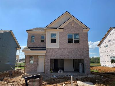 Spring Hill Single Family Home For Sale: 1009 Lonergan Circle #71
