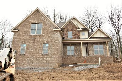 Mount Juliet Single Family Home For Sale: 14 Collette Ct. #110