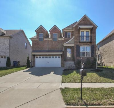 Goodlettsville Single Family Home For Sale: 418 Fall Creek Cir