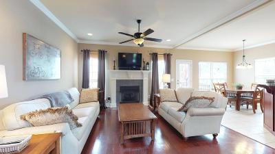Single Family Home For Sale: 318 Ossabaw Dr