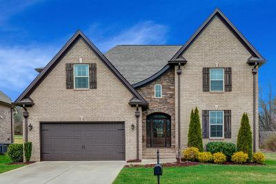 Spring Hill Single Family Home For Sale: 4157 Miles Johnson Pkwy