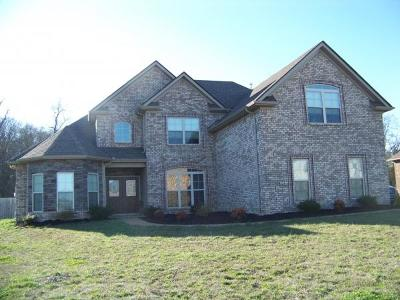 Lavergne Single Family Home Under Contract - Showing: 196 Sparrow Gap Dr