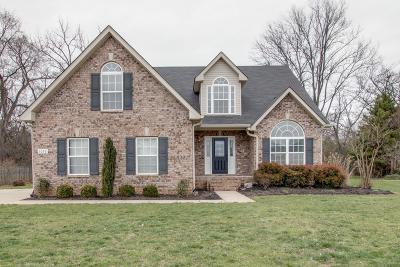 Single Family Home For Sale: 3038 Evanback Ct