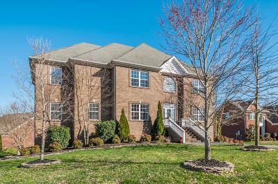 Spring Hill Single Family Home For Sale: 1932 Portview Dr