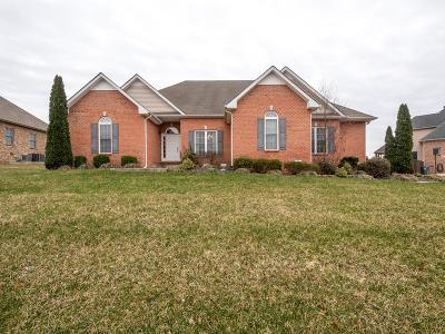 Clarksville Single Family Home For Sale: 823 Iron Wood Cir