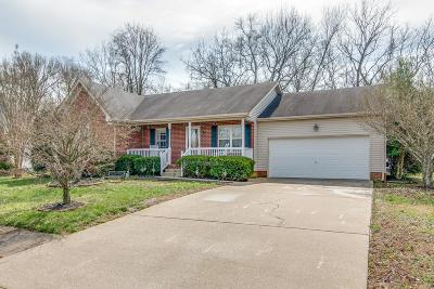 Mount Juliet Single Family Home For Sale: 516 Summit Way