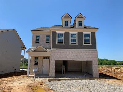 Spring Hill Single Family Home For Sale: 1013 Lonergan Circle #73