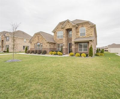 Single Family Home Under Contract - Showing: 714 Promise Way