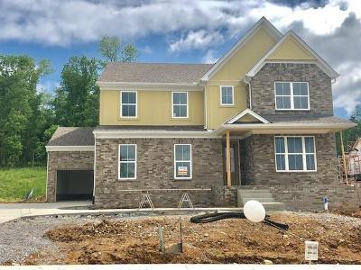 Nolensville Single Family Home For Sale: 644 Dunmeyer Court #83