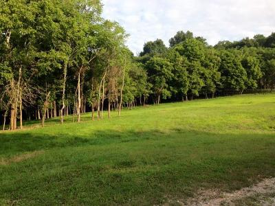 Pulaski Residential Lots & Land For Sale: Scenic Cir