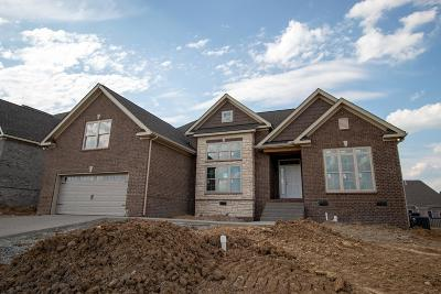 Spring Hill Single Family Home For Sale: 6005 Spade Dr Lot 193