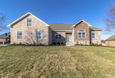 Clarksville Single Family Home For Sale: 141 Covey Rise Cir