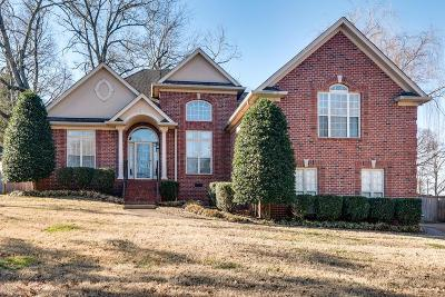 Mount Juliet Single Family Home Under Contract - Showing: 289 Page Dr