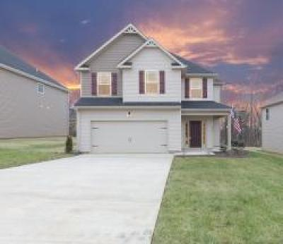 Clarksville Single Family Home For Sale: 1204 Henry Place Blvd