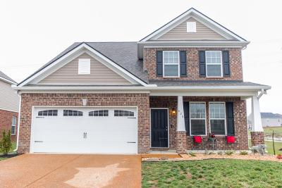 Mount Juliet Single Family Home For Sale: 628 Foster Ln
