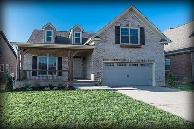 Spring Hill Single Family Home For Sale: 6041 Spade Dr Lot 208