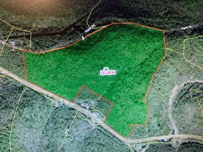 Dekalb County Residential Lots & Land For Sale: Hwy 141