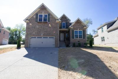 Spring Hill  Single Family Home For Sale: 6033 Spade Dr Lot 204