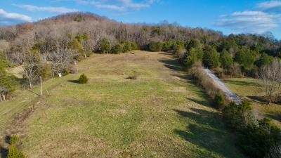 Woodbury TN Residential Lots & Land Sold: $107,500 SOLD at AUCTION