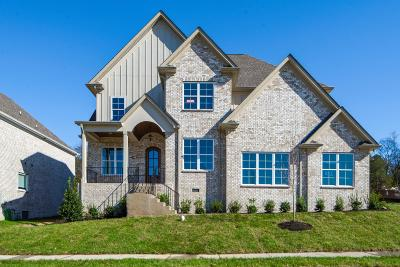 Hendersonville Single Family Home Under Contract - Showing: 102 N Malayna Drive Lot 90
