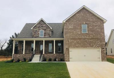 Clarksville Single Family Home For Sale: 71 Gallant Ct.