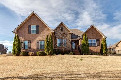 Mount Juliet Single Family Home Under Contract - Not Showing: 203 Ridgeview Preserve Dr