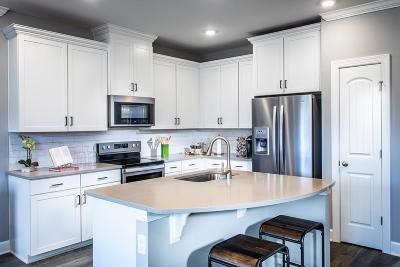 Nashville Single Family Home For Sale: 2738 Gossett Trail (Lot 45)