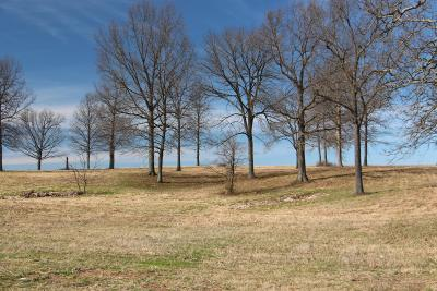 Cedar Hill Residential Lots & Land For Sale: Highway 41n