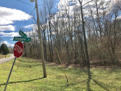 Collinwood Residential Lots & Land For Sale: Stephanie St E