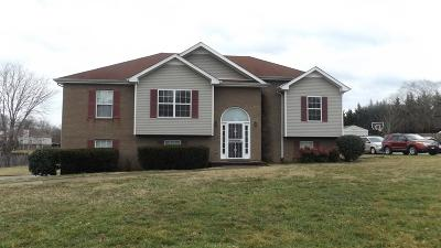 Clarksville Single Family Home For Sale: 3329 Greenspoint Dr