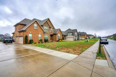 Murfreesboro Single Family Home For Sale: 1304 Twin View Dr