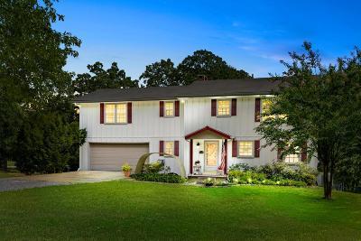 Adams, Clarksville, Springfield, Dover Single Family Home For Sale: 1110 Hutcheson Ln