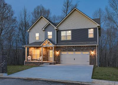Adams, Clarksville, Springfield, Dover Single Family Home For Sale: 1133 Winding Creek Ct