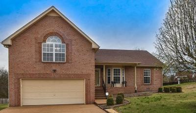 Hendersonville Single Family Home Under Contract - Showing: 104 Koleberg Trail
