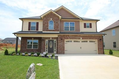 Clarksville Single Family Home For Sale: 442 Summerfield