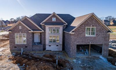 Spring Hill Single Family Home For Sale: 6030 Spade Drive Lot 255