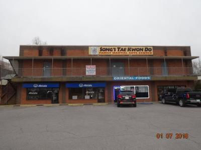 Adams, Clarksville, Springfield, Dover Commercial For Sale: 2060 Fort Campbell Blvd