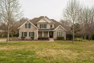 Davidson County Single Family Home For Sale: 922 Waterswood Dr