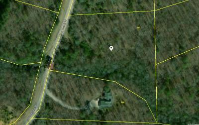 Van Buren County Residential Lots & Land For Sale: 191 Long Branch Rd