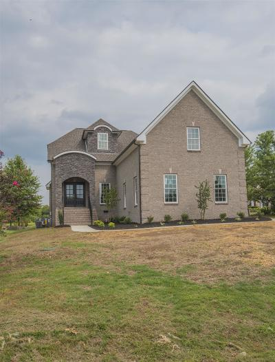Murfreesboro Single Family Home For Sale: 124 Steelson Ct