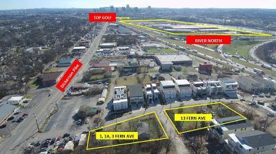 Nashville Single Family Home For Sale: 13 Fern Ave